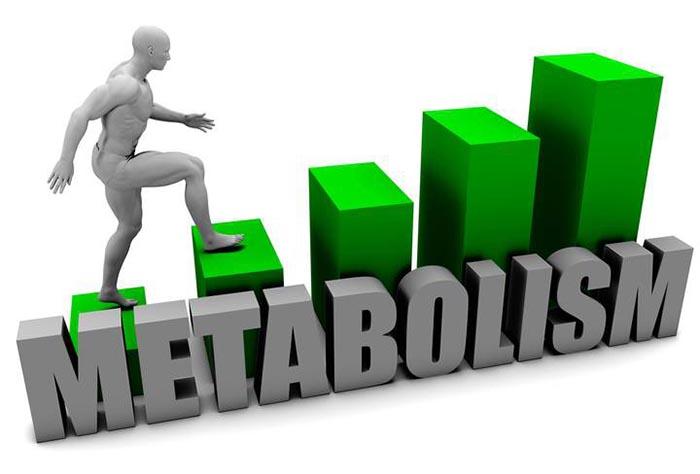Metabolizmayı Hızlandırma Yolları