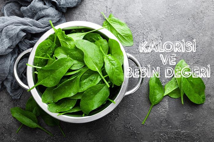 Diyet Ispanak Yemeği Kalorisi, Diyet Ispanak Yemeği Besin Değeri