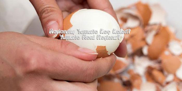 1 haşlanmış yumurta kaç kalori