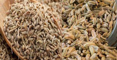 Rezene Anason Çayı; faydaları; yan etkileri; zayıflatırmı