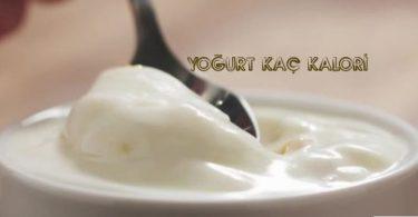 Yoğurdun kalorisi