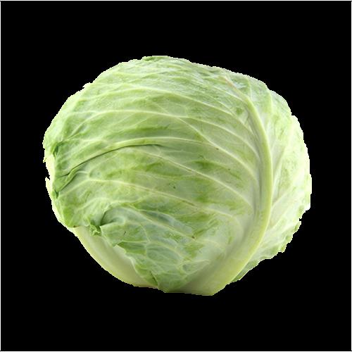 beyaz-lahana