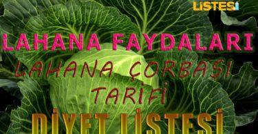 lahana-corbasi-tarifi-faydalari